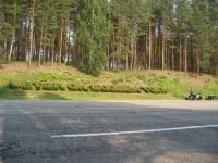 Metsä on Suomen tuki