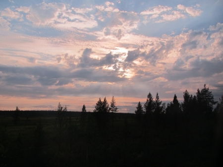 sun-over-the-swamp-jpg